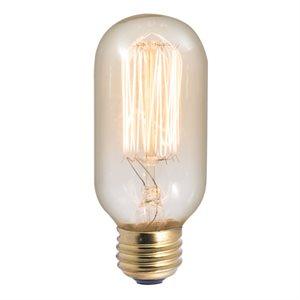 Ampoule, format T14, 40 watts, 2200K