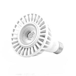 Ampoule DEL format PAR30, 13 watts, 2700K, 40 degrés, V3